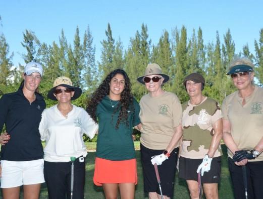2015 - golf 3